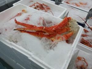 Crabe royal. Pinces