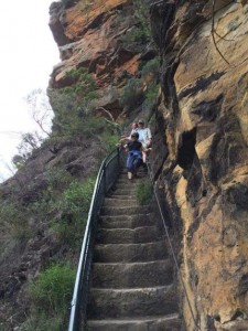 blue mountains.escalier