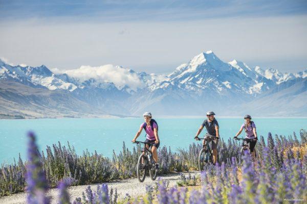 vélo en nouvelle zélande