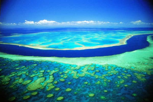 grande barrière de corail.