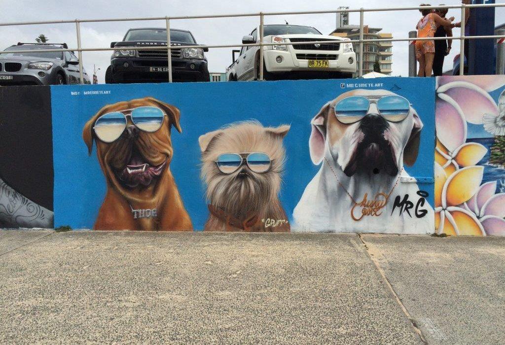 Bondi. Spot surf Sydney. Mur de street art.