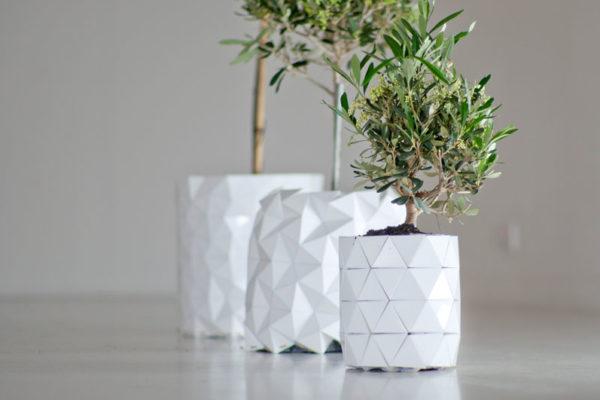 origami. Le pot pousse avec la plante