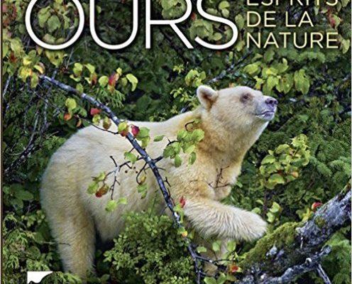 Ours. Paul Nicklen. Delachaux et Niestlé.