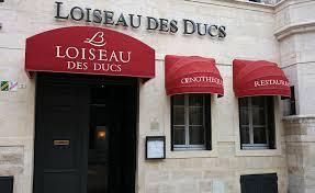 loiseau des Ducs