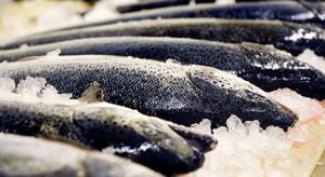 saumon entier maison Barthouil.