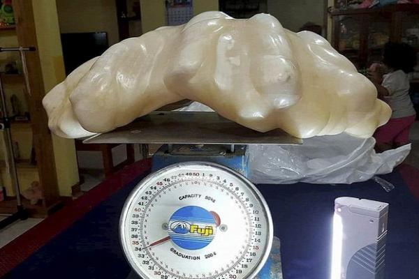 perle 34 Kg Philippines