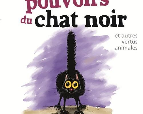 Les pouvoirs du chat noir. croyances populaires dont font l'objet les animaux