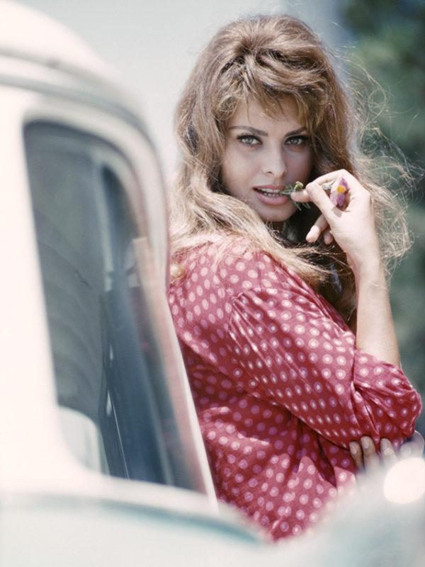 Sofia Loran