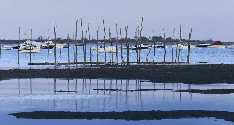 e-bassin-darcachon-se-dote-dune-marque-territoriale.