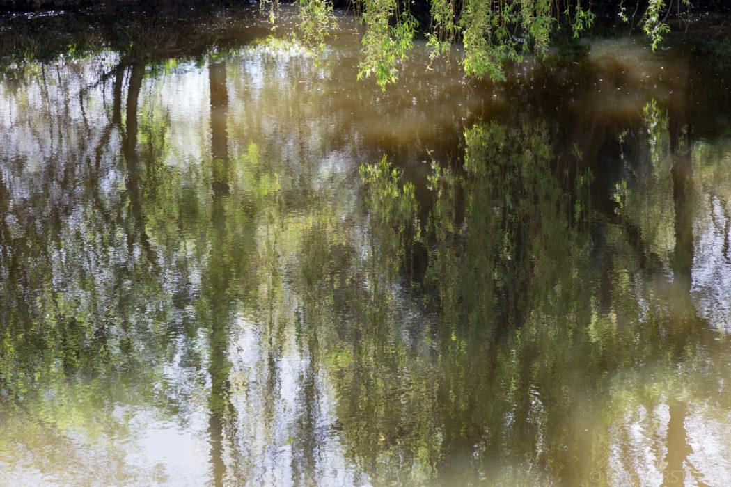 Ce dimanche 2 avril, le printemps est là sur le canal de Nantes à Brest. Ballade en vélo entre Blain et Guenrouet, les lumières sont magnifiques, le feuillage des arbres nous montre toute la game des verts, les reflets sur l'eau font rêver.  Un petit moment de bonheur. Crédit photo : Loïc Versteegh