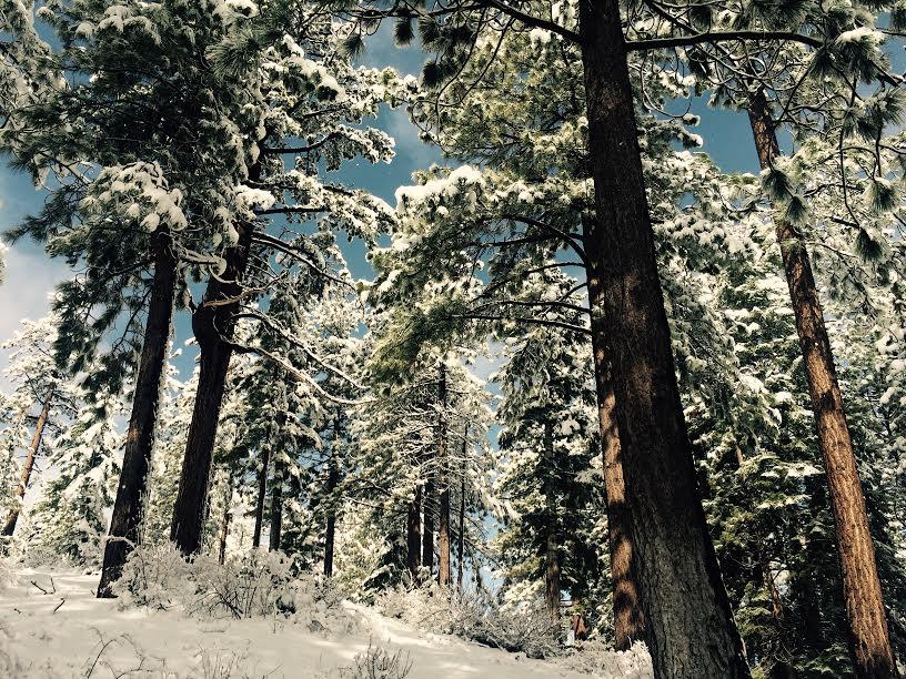 tahoe.cîme neige.