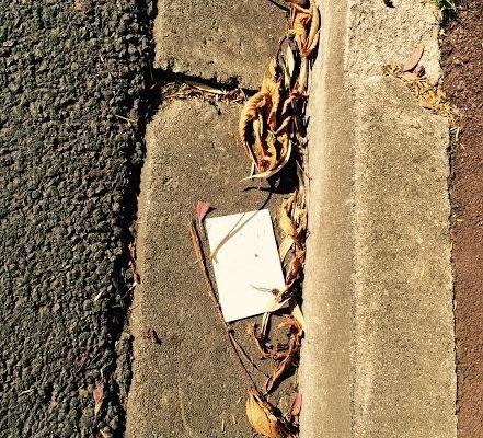 Durée de vie des déchets. On prend l'habitude cet été de ne rien laisser traîner.