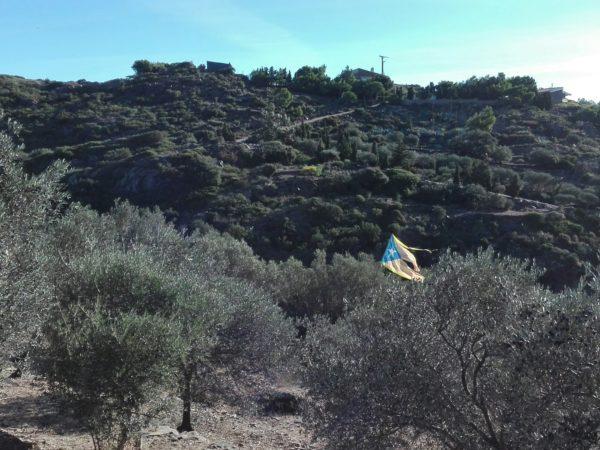 drapeau catalan. parc naturel de Creus.