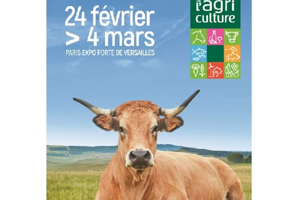 salon-agriculture-2018-une-vache-race-aubrac-pour-egerie_width1024
