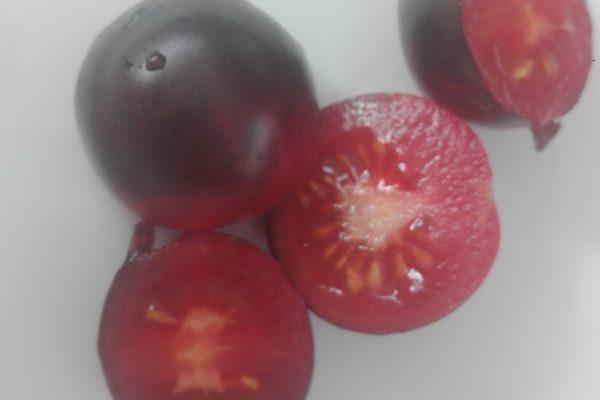 tomate «indigo rose». délicieux. bassin d'arcachon. Marché de la teste.