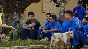 cuba : des chiens renifleurs d'euros.