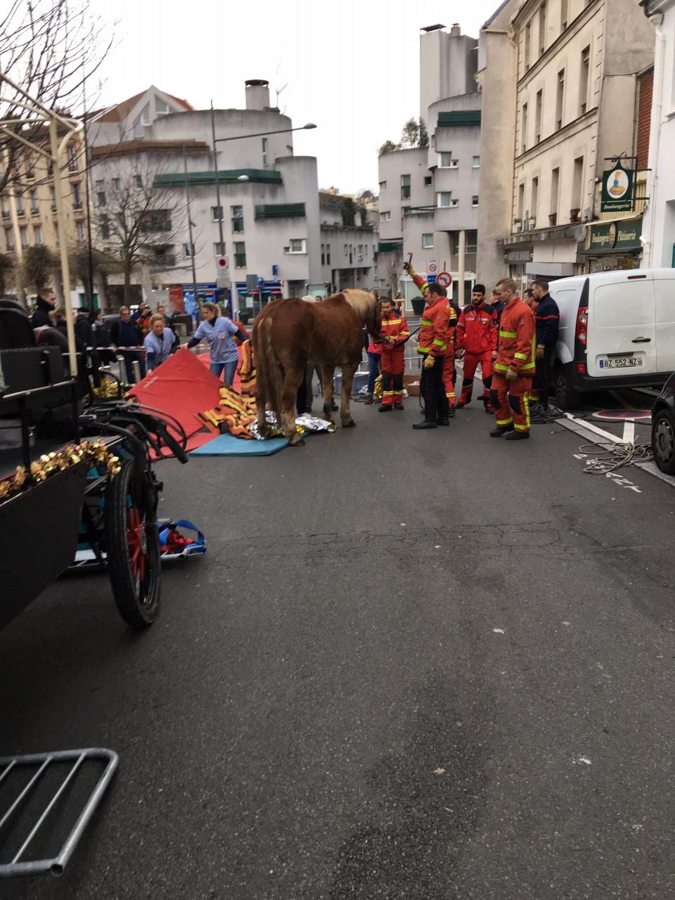 Gentilly, Noël 2019. Le cheval se relève après un malaise. Crédit photo. F. Rousset. La Femme Qui Marche