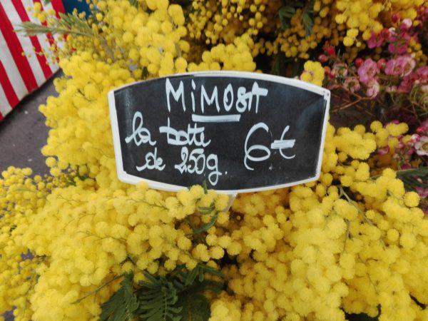 la Femme Qui Marche. Mimosas marché Porte de Saint-Cloud.a