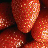 fraise.