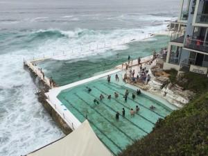 bondi. icebergs piscine