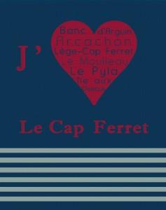 J'aime le Cap Ferret et le bassin d'Arcachon. Moulleau. Pyla etc...