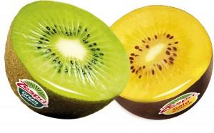 kiwi zesprit green vert ou SunGold jaune