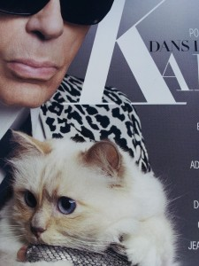 chat lagerfeld madame figaro