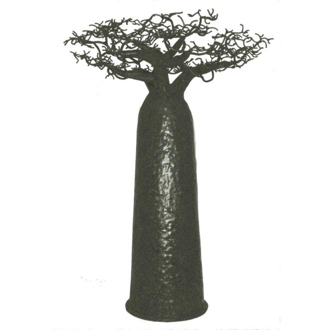 Baobab Droit 70cm - Passerailes - 145Ôé¼ - Copie