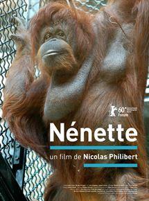 Nénette. Orang outan. Muséum19241483.jpg-c_215_290_x-f_jpg-q_x-xxyxx