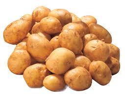 igp pour la pomme de terre de noirmoutier.