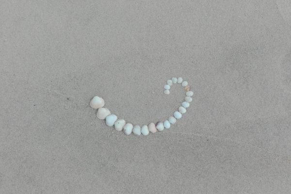 coquillage et dernier bain de mer. plage Maloune. Pyla